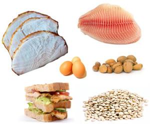 Macronutrients: Proteins