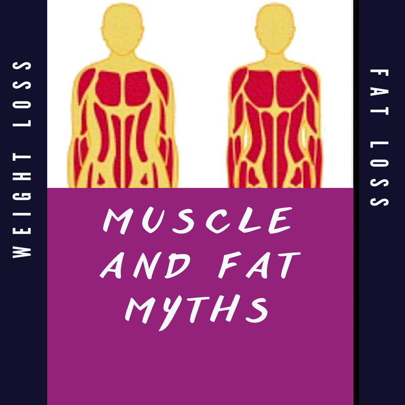 Muscle and Fat Myths – A quick lesson