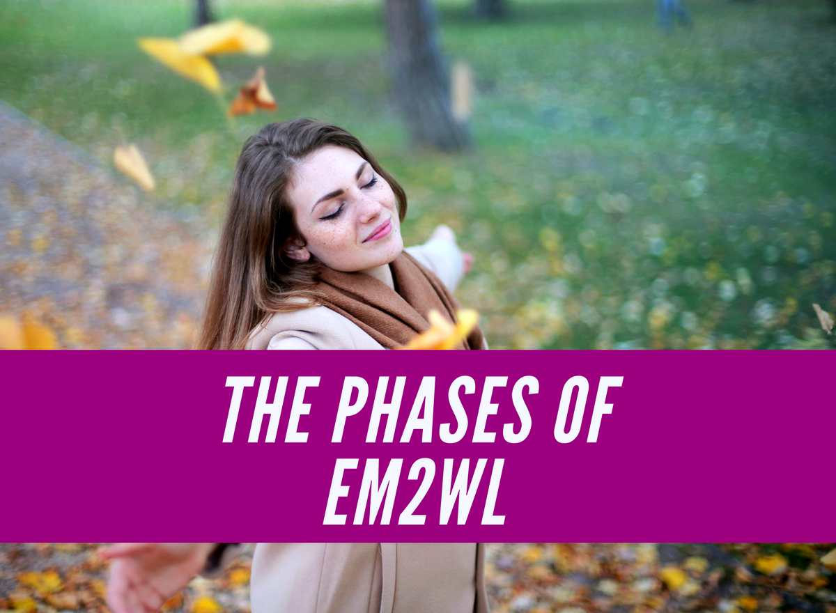The 5 Phases of EM2WL